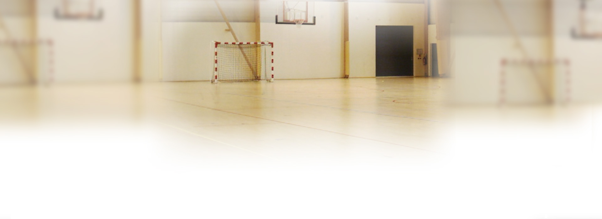 fond_handball